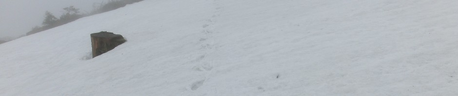 Schnee auf dem Dreisesselberg