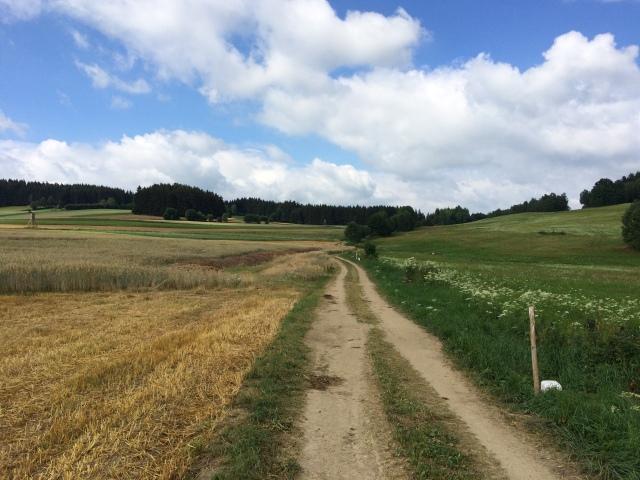 Wegverlauf direkt an der tschechischen Grenze