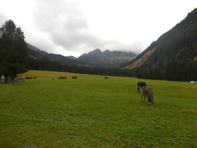 Start der Wanderung am Ende des Triebentals