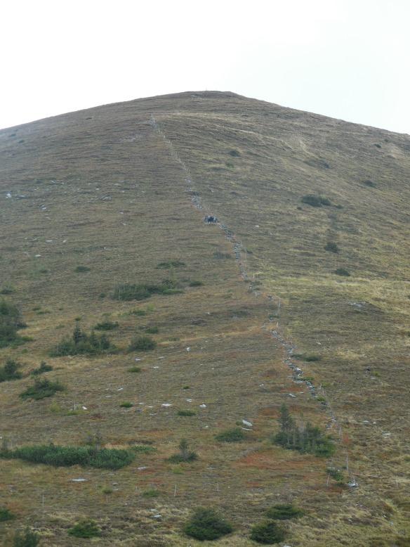 Aufstiegsweg zum Moarkogel