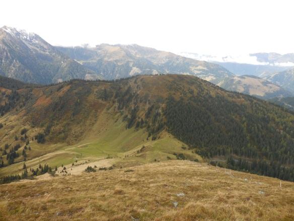 Beim Aufstieg zum Moarkogel - Blick hinüber zum Triebenfeldkogel