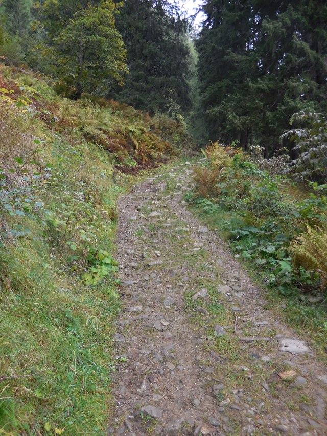 Wanderweg Richtung Rottenmanner Hütte